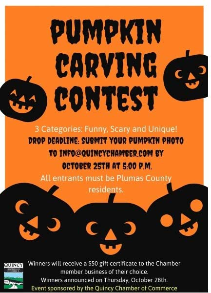 Quincy Pumpkin Carving Contest